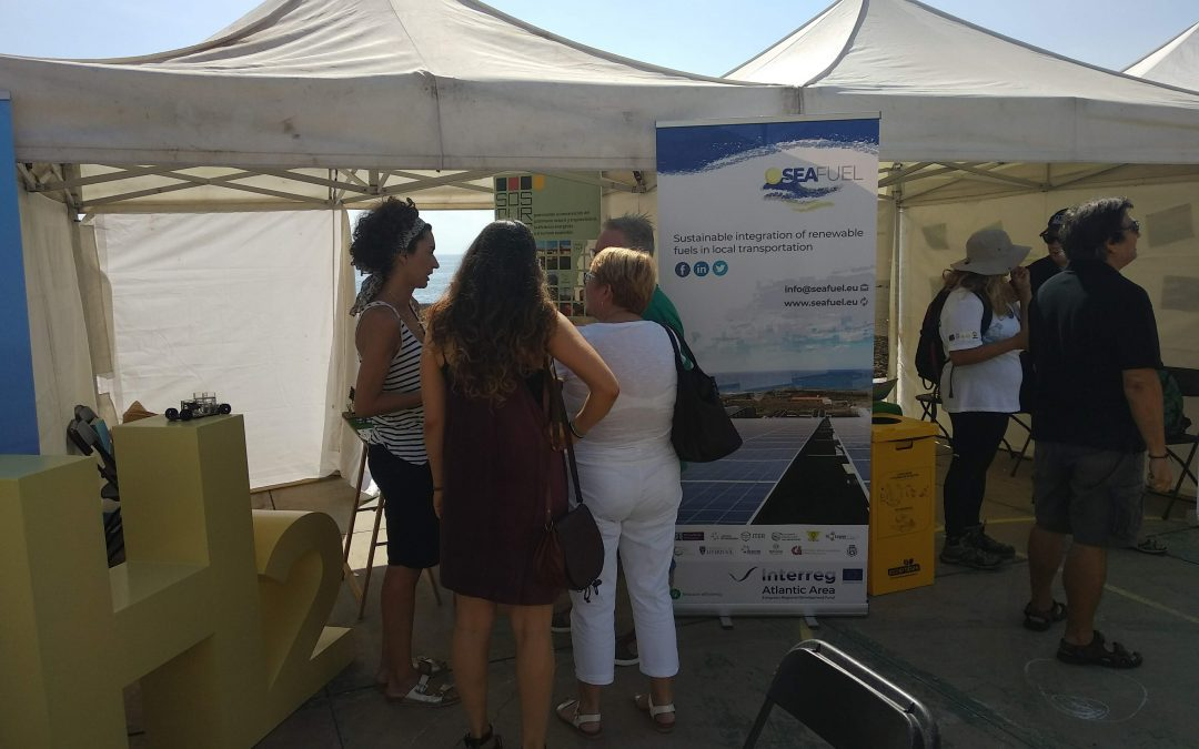 SEAFUEL organizes several activities during the month of November in Tenerife